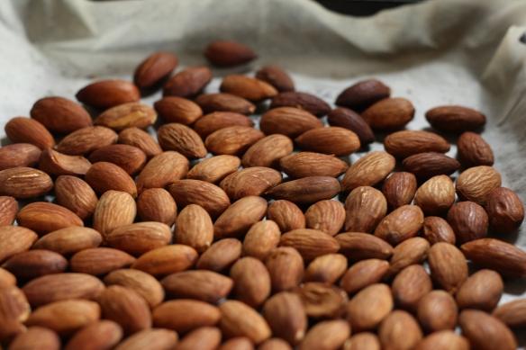 Honey Spiced Almonds 3