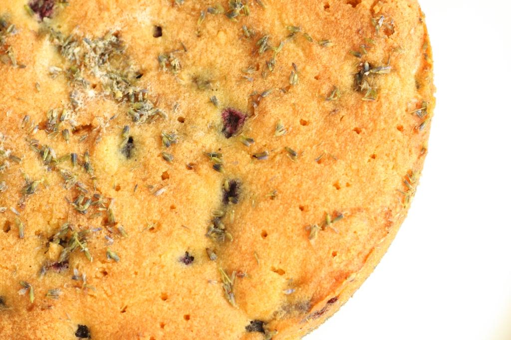 Gluten Free Blueberry Lavender Polenta Cake 7